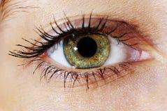 Eye stock image