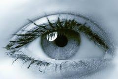 Eye Stock Images