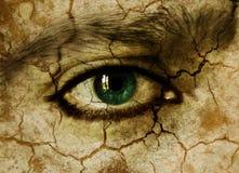 Eye. Skin like stone and green eye Stock Image
