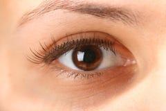 Eye. Girl eye look around for find something stock photography