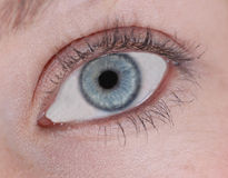The Eye Stock Photography