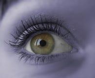 Eye. Background Royalty Free Stock Photos