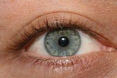 Eye. A close-up photo of human eye royalty free stock images