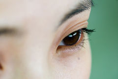 Eye. Brown eye on green background Royalty Free Stock Images