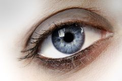 The Eye. Woman's blue eye close up Stock Images