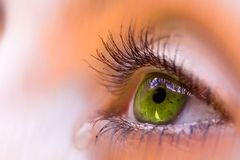 Eye. A green eye crying and a tear Stock Images