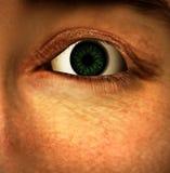 The Eye vector illustration