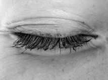 Eye. Closed eye, visibly lid and lashes Royalty Free Stock Photography