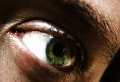 Eye. Green eye Stock Photography
