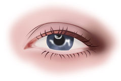 Eye. Close-up of the eye. ial illustration Stock Image