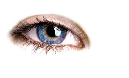 Eye Royalty Free Stock Images