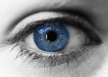 Eye. Blue iris eye over black and white. Closeup Royalty Free Stock Images