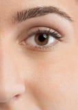 Eye. Closeup eye of beautiful young woman face Stock Photos