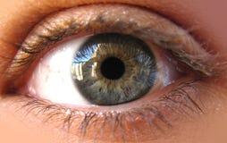 Eye. Blue iris eye in a macro picture. Closeup Royalty Free Stock Photography