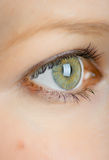 The eye. Human eye close-up. Shallow DOF Royalty Free Stock Photos