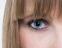 Eye. Beautiful eye of a young woman Royalty Free Stock Image