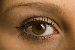 Eye. One female open brown eye with make-up Royalty Free Stock Images