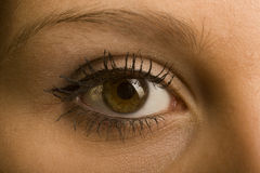 Eye. One female open brown eye with make-up Royalty Free Stock Image