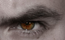 The eye. Close -up of a man eye in a serious situation Royalty Free Stock Image