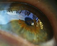 Eye. The person. in it the sky is reflected royalty free stock photos