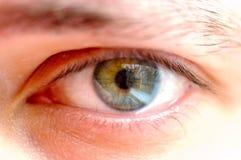 The eye Stock Image