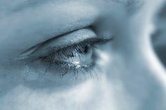Eye. Woman's eye Stock Photos