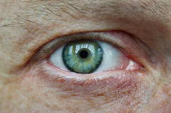 Eye of an adult male, green shade, close-up Stock Photo