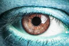 Eye of the alien Royalty Free Stock Photography
