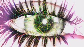 Eye Animation stock video