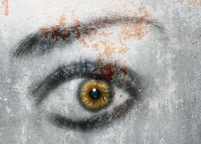 Eye Art. Photo of my eye done in an artistic style stock illustration