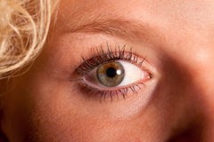 Eye of a beautiful young woman Royalty Free Stock Images