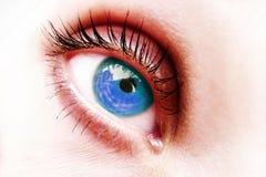 Eye Blue. Blue eye isolated on yhe white background Royalty Free Stock Photos