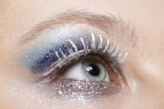 Eye with blue and silver sparkle make-up. One female eye with blue eyeshadow and silver sparkle make-up Stock Image