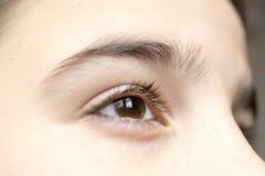 Eye of a boy stock image