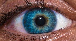 Eye. Bright blue human eye zoomed in Royalty Free Stock Photos