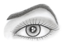 Eye and brow over white background. Graphite pencil on paper Stock Images