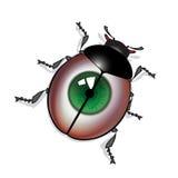 Eye bug. Bug with green eye print on shell Stock Photos
