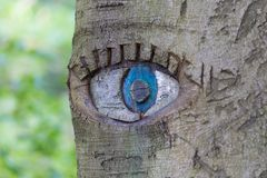 Eye carved in tree trunk. Stock Photo