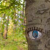 Eye carved in tree trunk. Stock Images