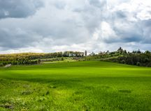 Eye-catching landscape with spring green grass,  hills and trees, cloudy sky stock images