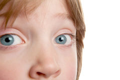 Eye child iris boy. Eye of child, close-up of boy with blue eyes. kid's face with focus on iris and nose Stock Image
