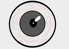 Eye in a Circle. Illustration of a eye in a Circle vector illustration