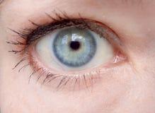 Eye close, macro. Eye female close-up, macro eye stock photography