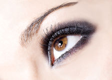 Eye close up Royalty Free Stock Images