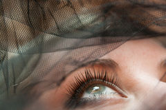Eye close-up. Sight up. Face under a veil. Eye close-up Royalty Free Stock Images