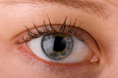 Eye close up 3 Royalty Free Stock Photography