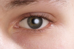 Eye close up Stock Images