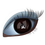 Eye close-up. Close-up of the eye. ial illustration Stock Photo