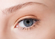 Eye close-up beauty with creative makeup. With natural pink colors stock image