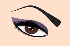 Eye close-up. Close up of a brown eye Royalty Free Stock Photo